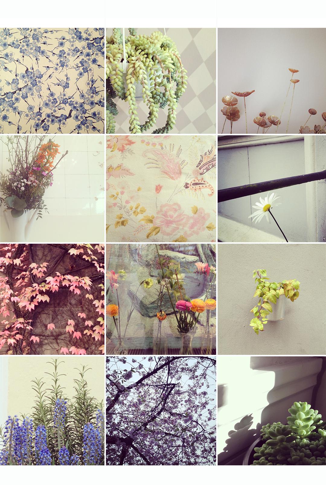 mintlametta_minsta florales_2_1080